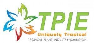 Logo TPIE
