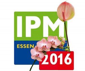 IPM 2016 Anthura