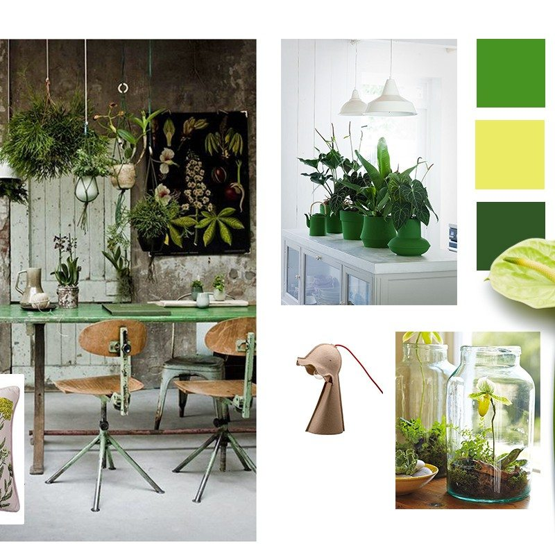Go green with the urban jungle style