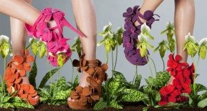Jan Jansen Orchid shoe