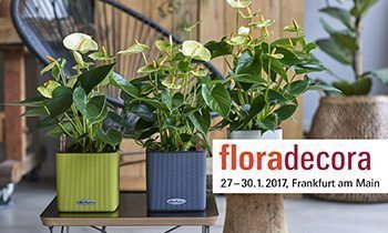 Meet us at Floradecora