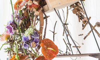 Anthurium in flower arrangements of Gregor Lersch