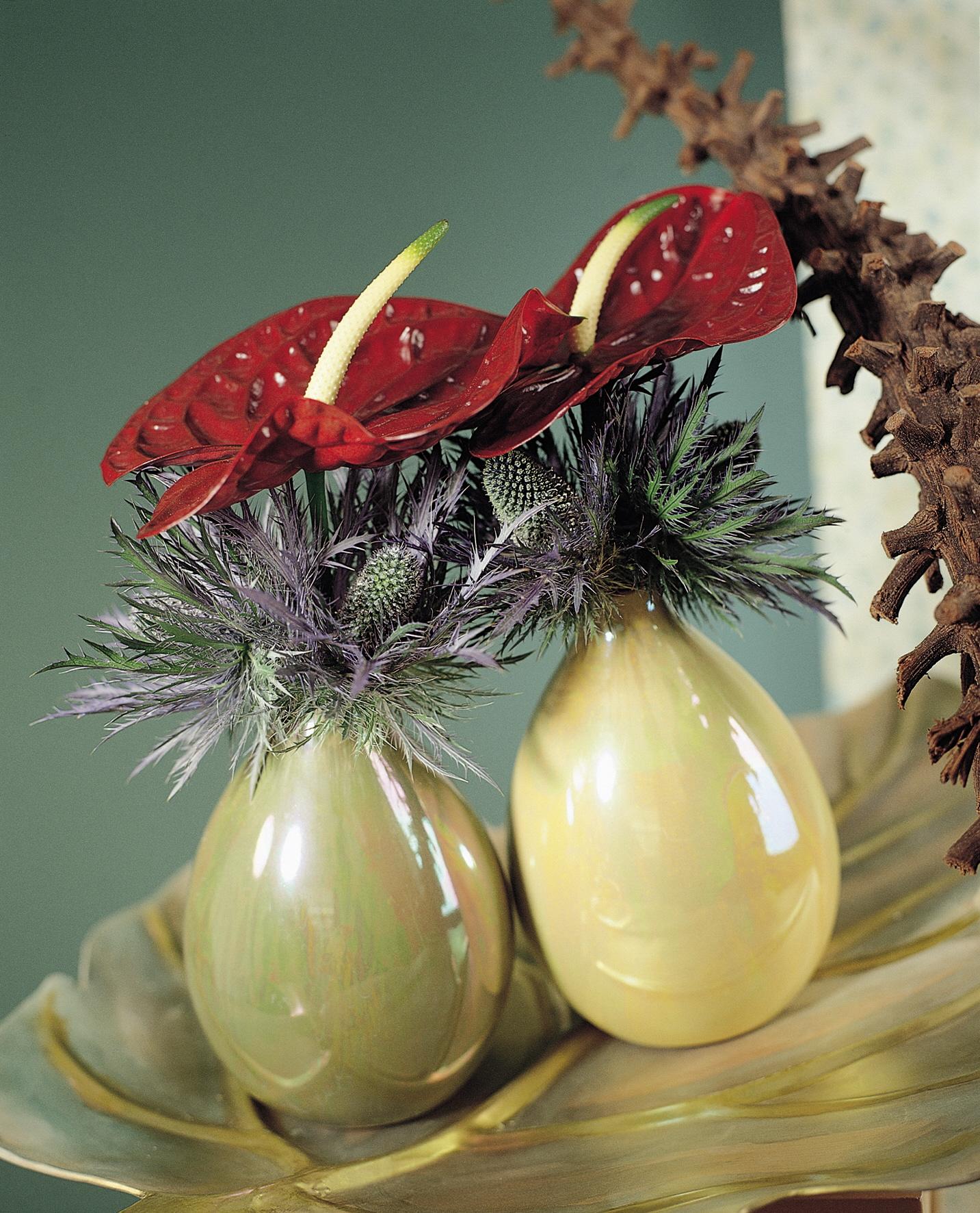 Inspiratie: de rode anthurium is de perfecte kerstbloem