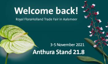 ¡Le damos la bienvenida a la Royal FloraHolland Trade Fair!